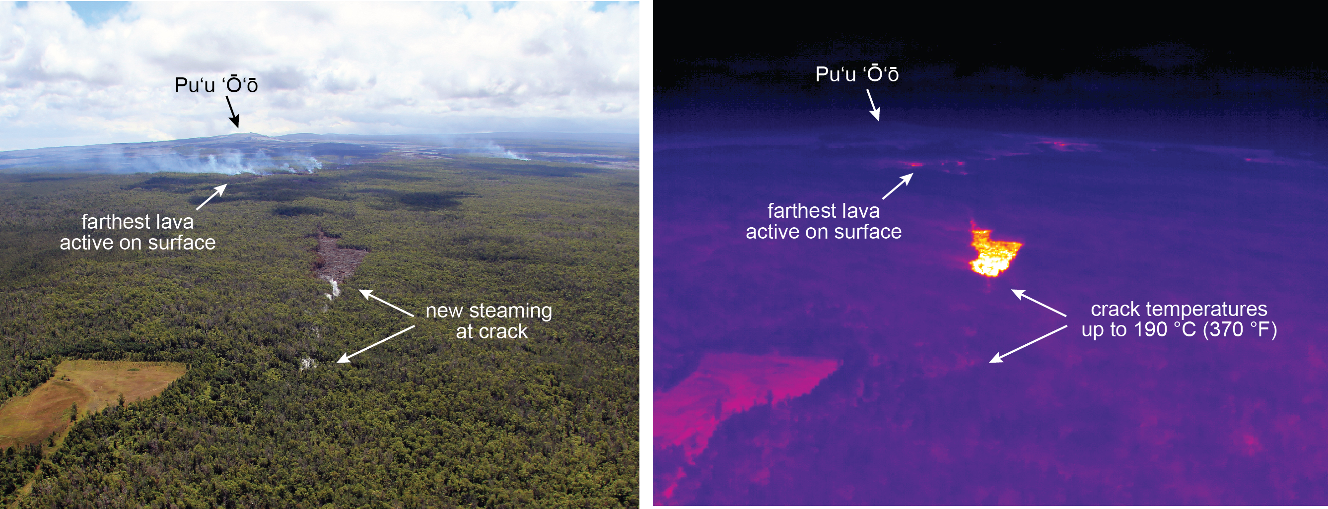 This photograph (left) and thermal image (right) of the June 27th lava flow were taken at the same time on August 28, 2014. Distant plumes of blue smoke mark the farthest active surface lava, which is also shown as small hot spots in the thermal image. The bright yellow patch in the center of the thermal image shows the pad of still-hot, but inactive, lava that emerged from a ground crack earlier this week. East of this lava pad, new steaming (shown by arrows) suggests that lava is continuing to advance below the surface along a ground crack. Direct views into the crack were not possible due to thick vegetation, but thermal images of the steaming areas revealed temperatures up to 190 degrees Celsius (370 degrees Fahrenheit), further evidence of lava moving through the crack. The most recent map of the June 27th flow is posted at http://hvo.wr.usgs.gov/maps/.  USGS images.